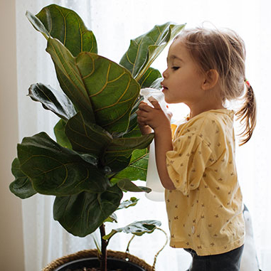 little girl playing with a house plant